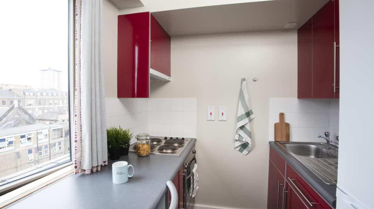 Euston Somerset Court Residence Accommodation - Kitchen