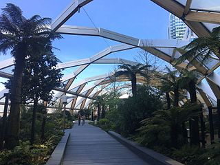 Canary_Wharf_Crossrail_Place_Roof_Garden