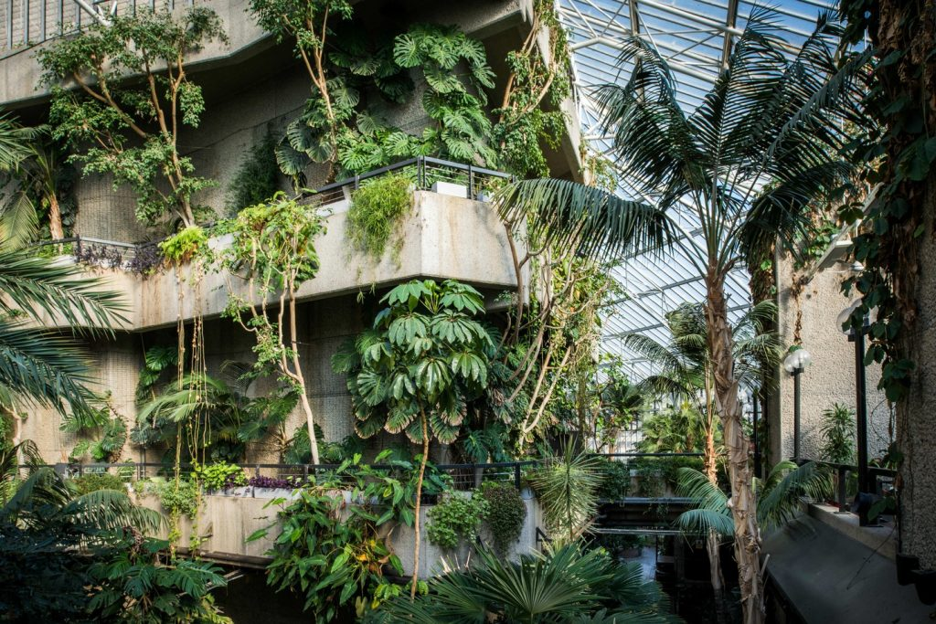 https://theculturetrip.com/europe/united-kingdom/england/london/articles/barbican-conservatory-a-peek-inside-londons-secret-garden/